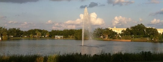 Big Lake at City Park is one of What we love about New Orleans.