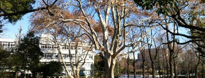 Yotsuya Mitsuke Park is one of 公園.