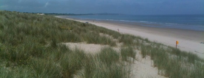 Curracloe Beach is one of Summit reunions (Things to do and see).