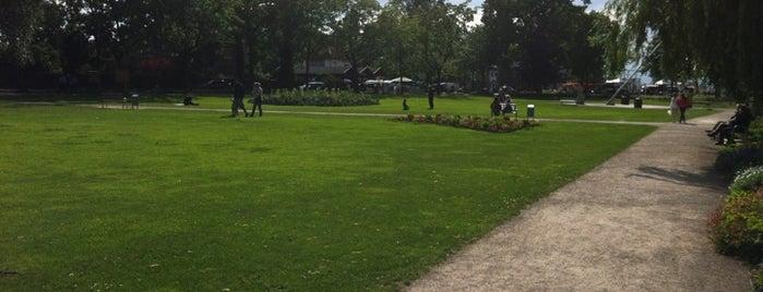 Park Steinhude is one of Was man in Steinhude gesehen haben muss.