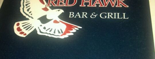 Red Hawk is one of Ann Arbor bucket list.