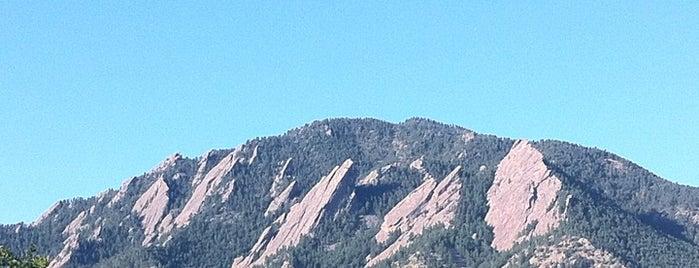 CU Boulder Buff-A-Hop