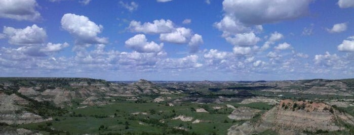 Theodore Roosevelt National Park is one of Visit the National Parks.