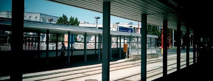 Trnavské mýto (tram, bus, trolleybus) is one of Free WiFi.
