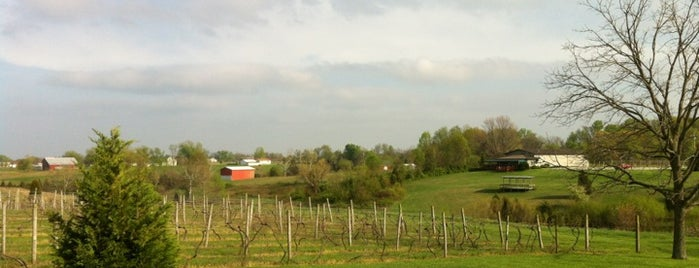 Madison Vineyards Estate Winery is one of Indiana Wine Trail.