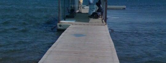 Poyraz Limanı is one of Bozcaada'da nerelerde yüzülür?.