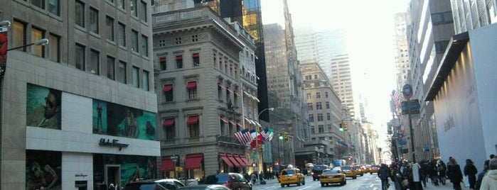 Fifth Avenue is one of Our Favorite NYC Spots.