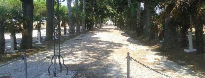 Cimitero comunale is one of Tutto Castelleone di Suasa.