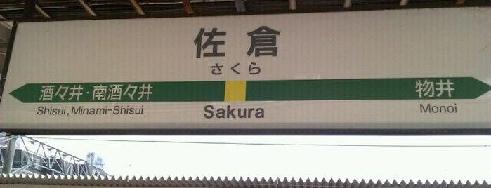 Sakura Station is one of 東京近郊区間主要駅.