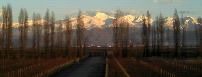 Bodega Cruzat is one of Mendoza.