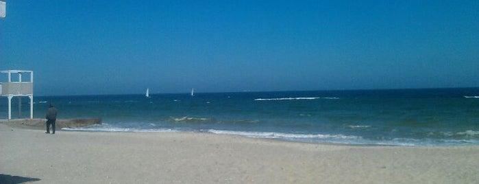 Море is one of <3.