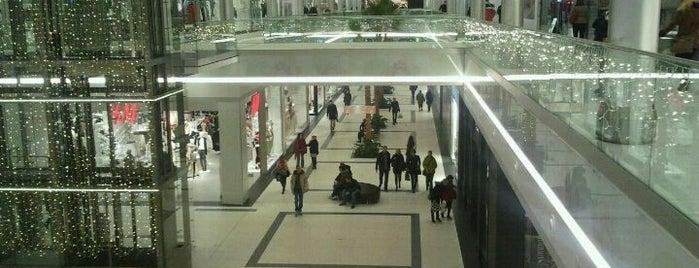 Shopping in Torun