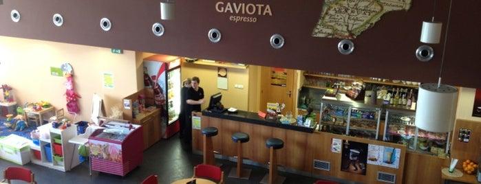 Literární kavárna (MZK) is one of Cafés.