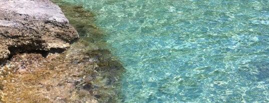 Άμμος Beach Bar is one of Off to Chalkidiki ♥ (drinks 'n' food).