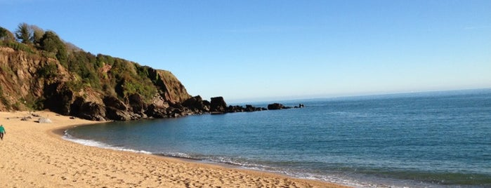 Blackpool Sands is one of Devon.