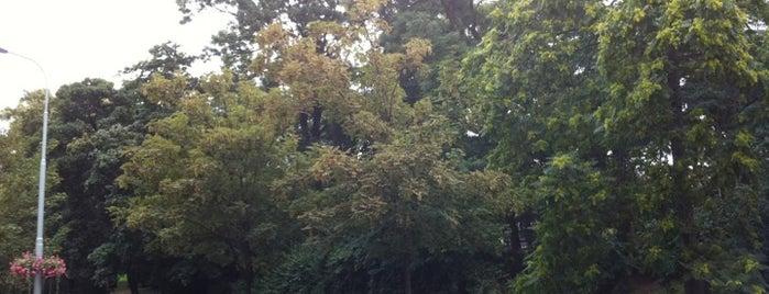 Vrchlického sady is one of Favorite Parks around the Globe.
