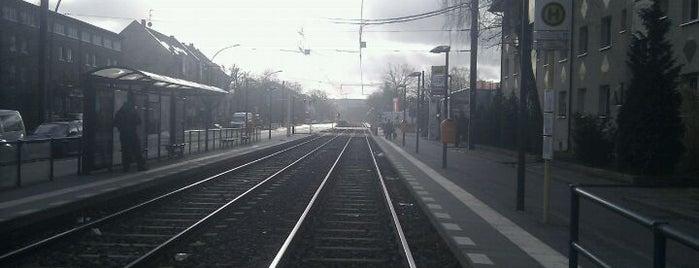 H Pasewalker Straße / Blankenburger Weg is one of Berlin tram line 50.