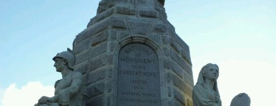 National Monument to the Forefathers is one of Partners in Preservation-Boston.