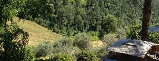 Salvadonica Borgo Agrituristico del Chianti Hotel San Casciano in Val di Pesa is one of Chianti Classico Producers.