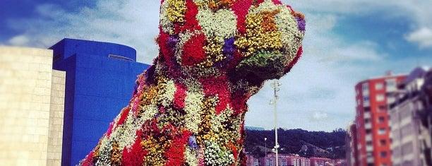 Puppy (Guggenheim) is one of Europa.