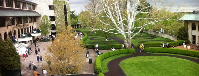 Keeneland is one of Best Places to Check out in United States Pt 2.