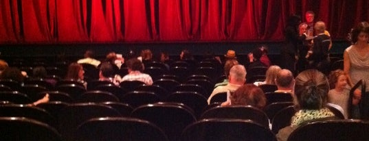The Joyce Theater is one of Performing Arts Venue.