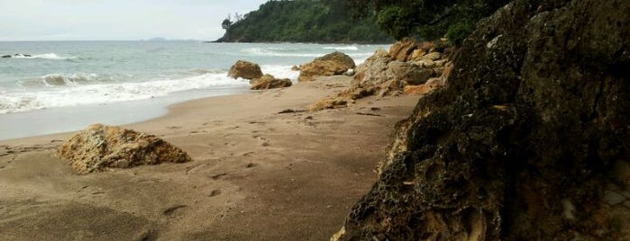 Hot Water Beach is one of Attractions to Visit.