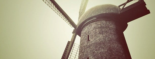 Dutch Windmill is one of Best SF.