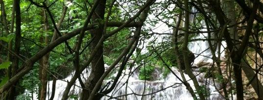 """Водопад """"Зелената скала"""" is one of Проекто-разходка."""