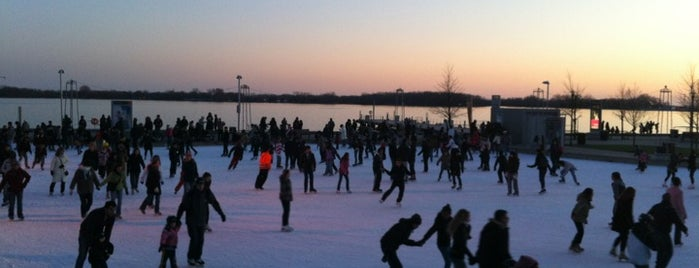 Natrel Pond/Rink is one of Toronto Activities.