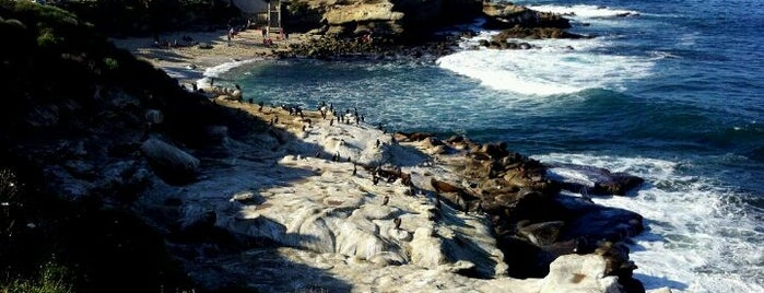 La Jolla Cove is one of 25 Must See in America's Finest City.