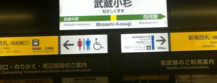 Musashi-Kosugi Station is one of 東京近郊区間主要駅.