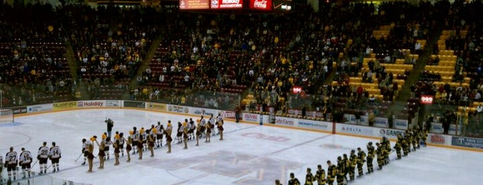 Mariucci Arena is one of Activities.