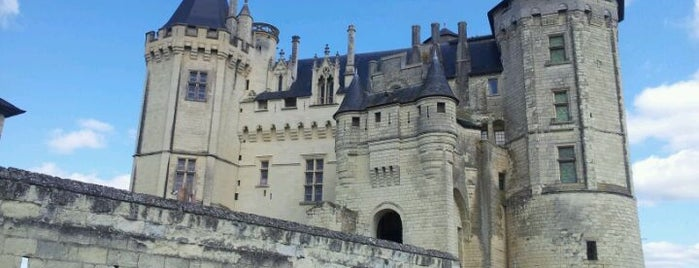 Château de Saumur is one of Best of World Edition part 3.