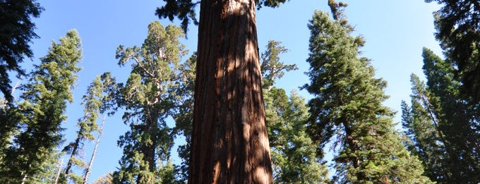 Sequoia & Kings Canyon National Parks is one of Sequoia National Park.