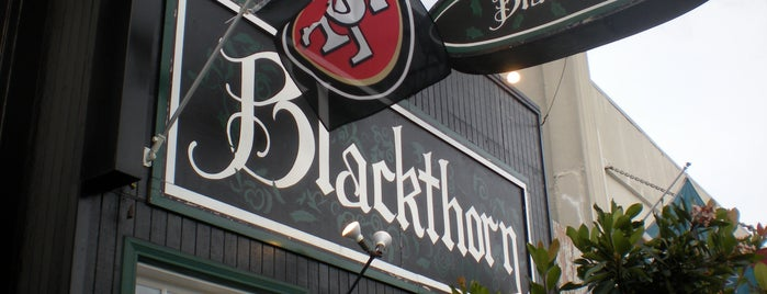 Blackthorn Tavern is one of The 15 Best Places with Trivia in San Francisco.