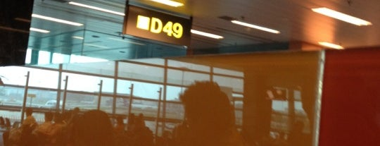 Gate D49 is one of SIN Airport Gates.