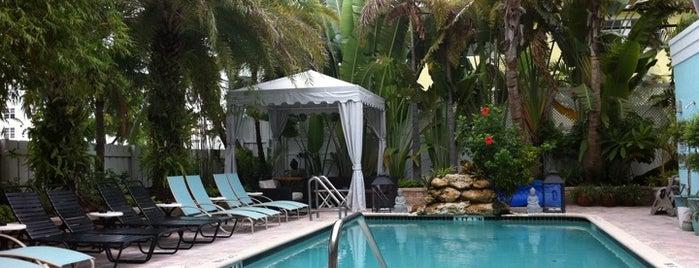 Fl Gay Resort 73