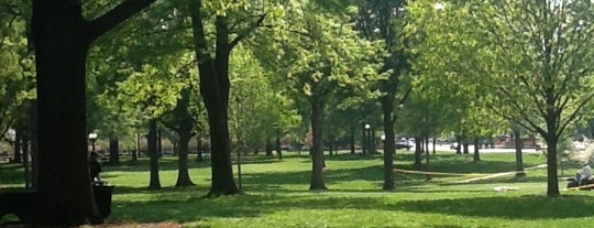 The Grove is one of Favorite Places on Campus.