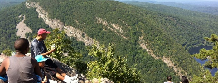 Mt. Tammany - Delaware Water Gap is one of Local stuff to do.