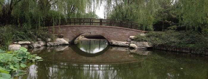 北京植物园 Beijing Botanical Garden is one of Go Beijing or Go Home.