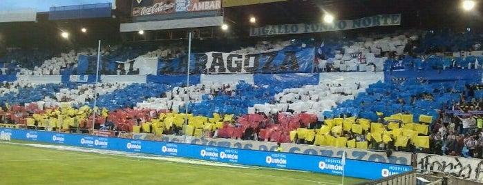 La Romareda is one of Campos de fútbol.
