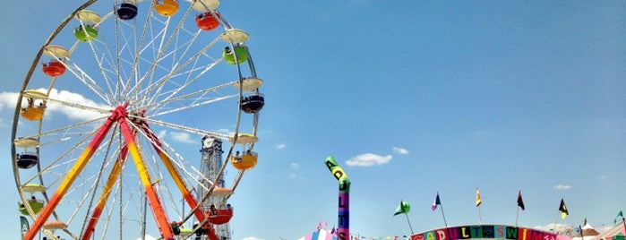 Bonnaroo Music & Arts Festival is one of Bing's Ultimate Music Festival Guide.