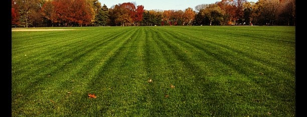 Great Lawn is one of Park Highlights of NYC.