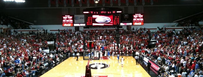 Stegeman Coliseum is one of Basketball arena.