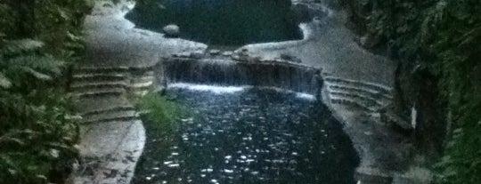 Hidden Valley Springs Resort is one of Phillipines recommendations.
