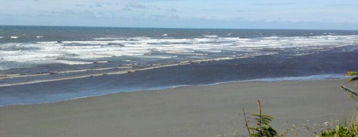 Copalis Beach, WA is one of Favorite Great Outdoors.