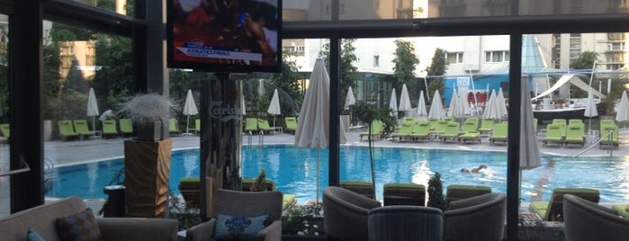 Radisson Blu Hotel is one of Pools.