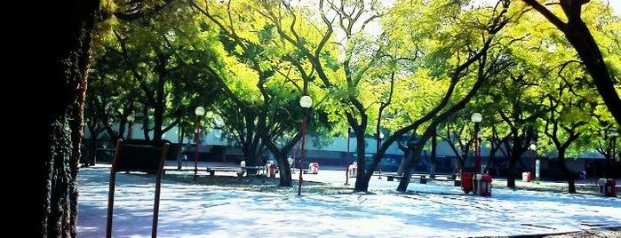 Universidad Autónoma Metropolitana is one of Ciudad de México :: Universidades.