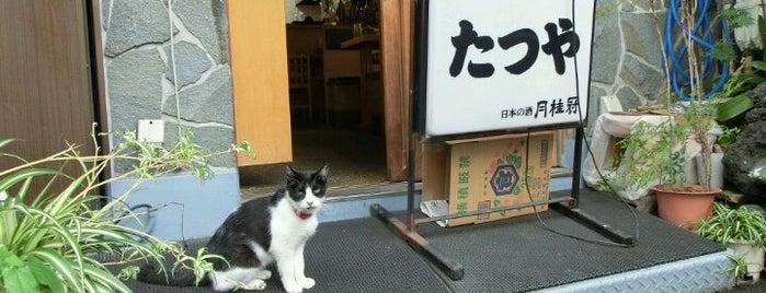 居酒屋たつや is one of 月島もんじゃレス.